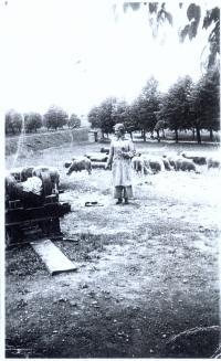 Doris Grozdanovičová v Terezíně rok 1942
