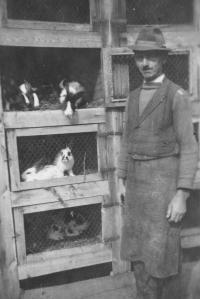 Otec s králíky, Úboč 1951
