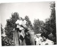 1981 in India