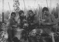 Na chmelu, Jaroslav Hutka vlevo, 1963