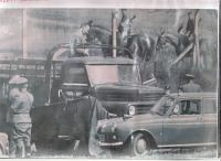 Escape with a lorry, Pornóapáti-Horvátlövő, June 1966