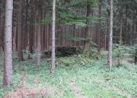 Agrární valy z kamenů, které stály před válkou na okrajích polí v Kamenné