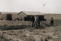 Ota pracuje v Bejt Jicchak, 1949-1950