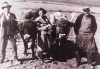 Harry Kraus, Otův bratr, na Hagiboru, 1940