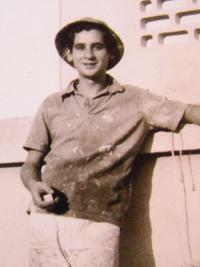 Lino the painter