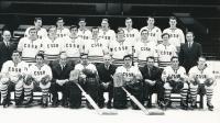 Jan Havel, 1. zleva nahoře, Národní mužstvo 1971, Bern/Ženeva, mistrovství světa