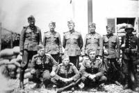 Vládní vojáci