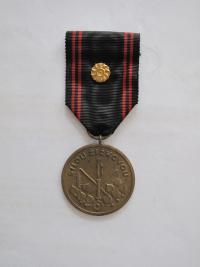 """Medaile """"Silou Žižkovou"""" - líc"""