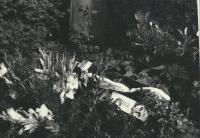 Pohřeb J. Kuliše