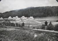 Javoricko in 1951 for the new build