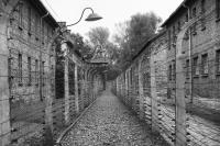 Auschwitz (photo by Jindřich Buxbaum).