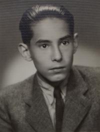 Portrét z jinošských let