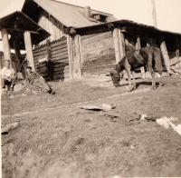 A smithy in Gubakha (father on the left) 1935