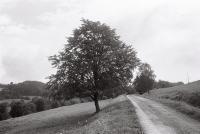 Krajina valašských pasek v okolí Růžďky / srpen 2016