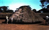 Manželka a synové v Nigérii, 1961-1964