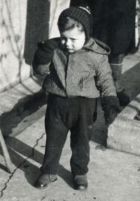 Vilém Lederer na konci okupace