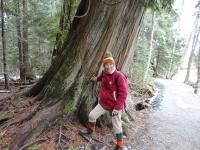 Markéta s malým stromem poblíž Mount Whistler, 2014