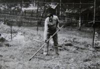 Manžel pamětnice v zahrádkářské kolonii, Rotava, 80. či 90. léta