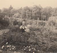 Na zahradě v Lysé nad Labem u domu na Zámku