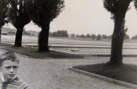 Dachau 1968, syn pamětníka