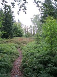 Stezky v Rychlebských horách po níž chodili kurýři se samizdaty