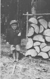 syn Boženy Kopcové, 1945