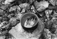 """Zvýstavy  Jiřího """"Pupen"""" Růžička zTřebíče na undergroundovém festivalu na Třemešku pořádaném v roce 1985 na narozeniny Antonína Mikšíka"""