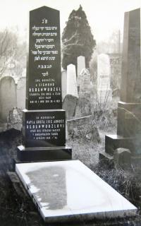 Rebenwurzel family tomb in Strážnice