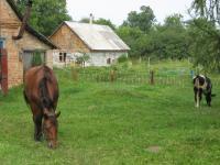 Český Malín v roce 2009