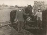 Father with horses in Ledoc