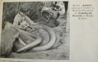 Nalezení mamuta