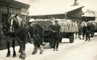 Otec jako kočí v Žamberku, 1953