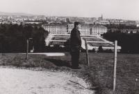 Schönbrunn (1964)
