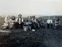 Pracovníci na poli v Borovníku